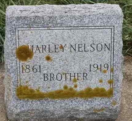 NELSON, CHARLEY - Lincoln County, South Dakota | CHARLEY NELSON - South Dakota Gravestone Photos
