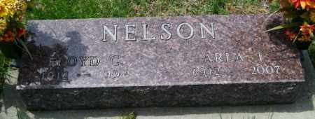NELSON, FLOYD C - Lincoln County, South Dakota | FLOYD C NELSON - South Dakota Gravestone Photos