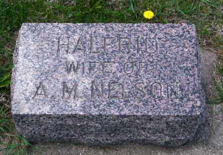NELSON, HALFRID - Lincoln County, South Dakota   HALFRID NELSON - South Dakota Gravestone Photos