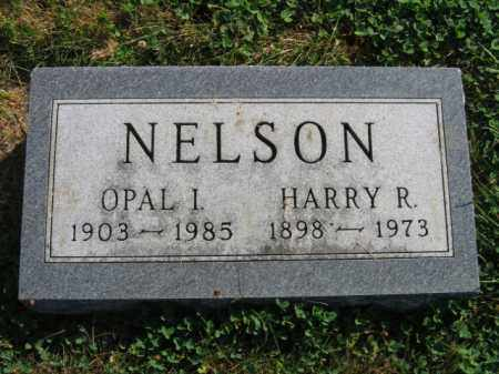 NELSON, HARRY R - Lincoln County, South Dakota | HARRY R NELSON - South Dakota Gravestone Photos