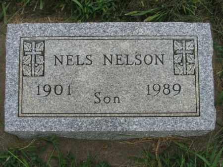 NELSON, NELS - Lincoln County, South Dakota | NELS NELSON - South Dakota Gravestone Photos