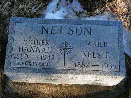 NELSON, NELS F - Lincoln County, South Dakota | NELS F NELSON - South Dakota Gravestone Photos