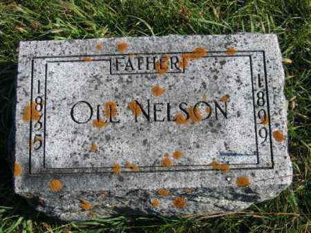 NELSON, OLE - Lincoln County, South Dakota | OLE NELSON - South Dakota Gravestone Photos