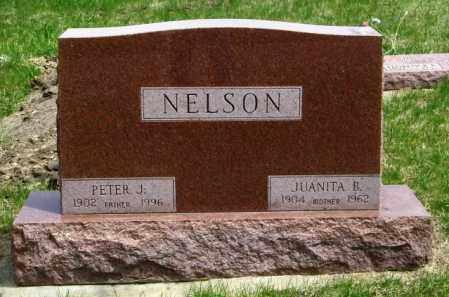 NELSON, PETER J - Lincoln County, South Dakota | PETER J NELSON - South Dakota Gravestone Photos