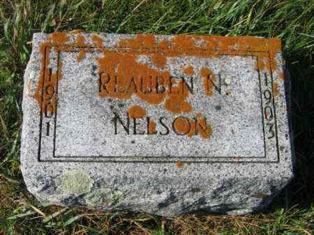 NELSON, REAUBEN N - Lincoln County, South Dakota | REAUBEN N NELSON - South Dakota Gravestone Photos