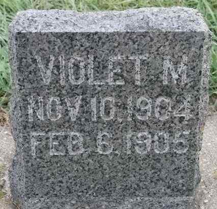 NELSON, VIOLET M - Lincoln County, South Dakota | VIOLET M NELSON - South Dakota Gravestone Photos