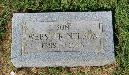 NELSON, WEBSTER - Lincoln County, South Dakota | WEBSTER NELSON - South Dakota Gravestone Photos