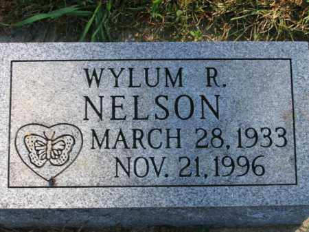 NELSON, WYLUM RICHARD - Lincoln County, South Dakota | WYLUM RICHARD NELSON - South Dakota Gravestone Photos
