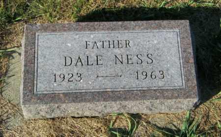NESS, DALE - Lincoln County, South Dakota   DALE NESS - South Dakota Gravestone Photos