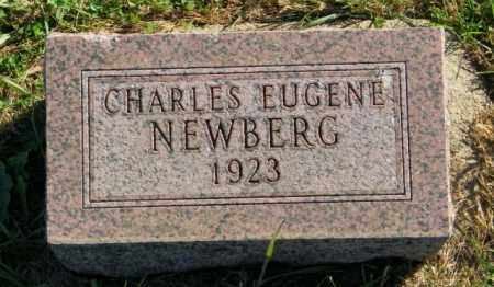 NEWBERG, CHARLES EUGENE - Lincoln County, South Dakota   CHARLES EUGENE NEWBERG - South Dakota Gravestone Photos