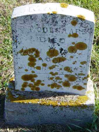 ODEGAARD, MARY - Lincoln County, South Dakota   MARY ODEGAARD - South Dakota Gravestone Photos