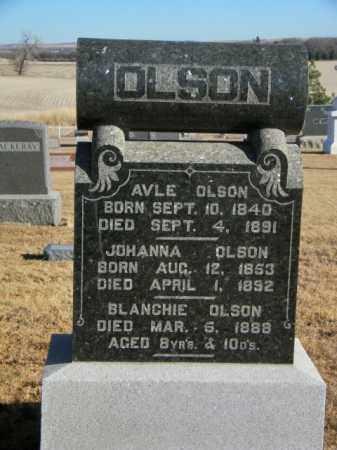 OLSON, AVLE - Lincoln County, South Dakota | AVLE OLSON - South Dakota Gravestone Photos