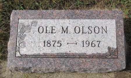 OLSON, OLE M. - Lincoln County, South Dakota   OLE M. OLSON - South Dakota Gravestone Photos