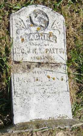 PAXTON, RACHEL - Lincoln County, South Dakota | RACHEL PAXTON - South Dakota Gravestone Photos