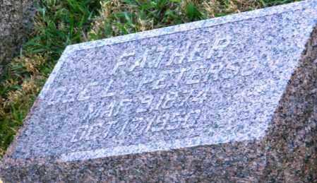 PETERSON, OLE L. - Lincoln County, South Dakota   OLE L. PETERSON - South Dakota Gravestone Photos