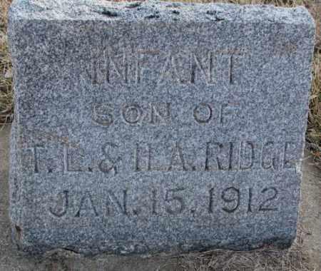 RIDGE, INFANT - Lincoln County, South Dakota   INFANT RIDGE - South Dakota Gravestone Photos