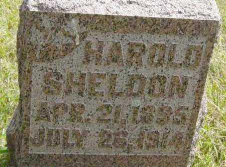 SHELDON, HAROLD - Lincoln County, South Dakota   HAROLD SHELDON - South Dakota Gravestone Photos
