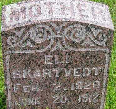 SKARTVEDT, ELI - Lincoln County, South Dakota | ELI SKARTVEDT - South Dakota Gravestone Photos