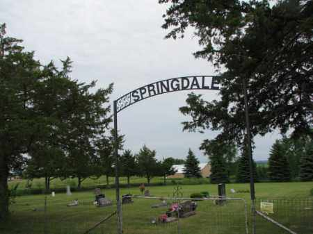 *SPRINGDALE, OVERVIEW & NOTES - Lincoln County, South Dakota | OVERVIEW & NOTES *SPRINGDALE - South Dakota Gravestone Photos