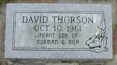 THORSON, DAVID - Lincoln County, South Dakota | DAVID THORSON - South Dakota Gravestone Photos