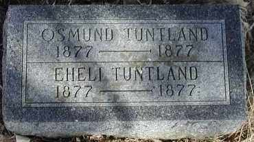 TUNTLAND, EHELI - Lincoln County, South Dakota | EHELI TUNTLAND - South Dakota Gravestone Photos