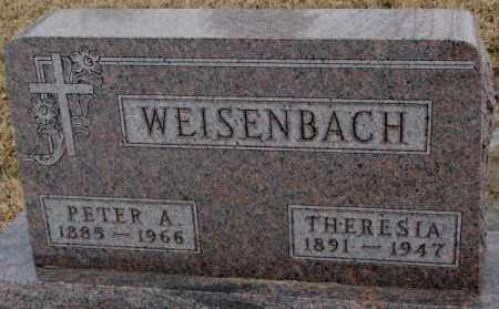 WEISENBACH, THERESIA - Lincoln County, South Dakota | THERESIA WEISENBACH - South Dakota Gravestone Photos
