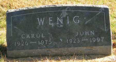 WENIG, CAROL - Lincoln County, South Dakota   CAROL WENIG - South Dakota Gravestone Photos