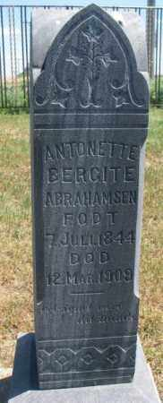 ABRAHAMSEN, ANTONETTE - Lyman County, South Dakota | ANTONETTE ABRAHAMSEN - South Dakota Gravestone Photos