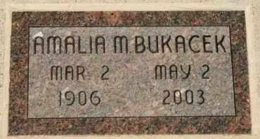 "BUKACEK, AMALIA M ""MOLLY"" - Lyman County, South Dakota   AMALIA M ""MOLLY"" BUKACEK - South Dakota Gravestone Photos"