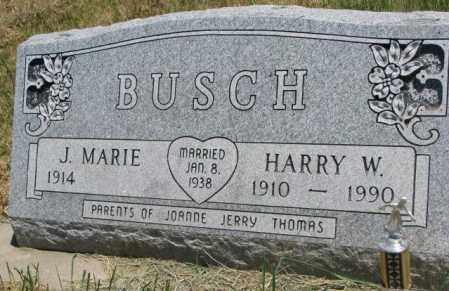 BUSCH, HARRY W. - Lyman County, South Dakota | HARRY W. BUSCH - South Dakota Gravestone Photos