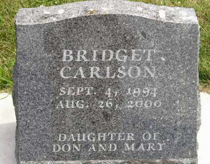 CARLSON, BRIDGET - McCook County, South Dakota | BRIDGET CARLSON - South Dakota Gravestone Photos