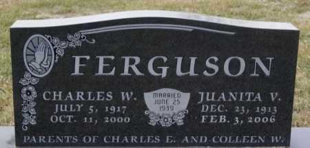 FERGUSON, CHARLES W - McCook County, South Dakota | CHARLES W FERGUSON - South Dakota Gravestone Photos