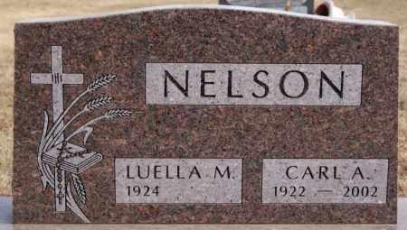 NELSON, LUELLA M - McCook County, South Dakota | LUELLA M NELSON - South Dakota Gravestone Photos