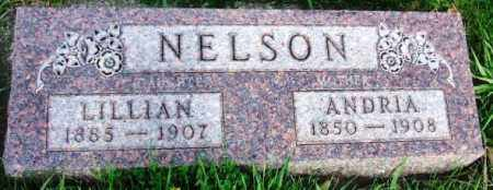 NELSON, ANDRIA - McCook County, South Dakota | ANDRIA NELSON - South Dakota Gravestone Photos