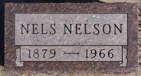 NELSON, NELS - McCook County, South Dakota | NELS NELSON - South Dakota Gravestone Photos