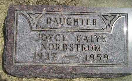 NORDSTROM, JOYCE GALYE - McCook County, South Dakota | JOYCE GALYE NORDSTROM - South Dakota Gravestone Photos
