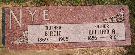NYE, BIRDIE - McCook County, South Dakota | BIRDIE NYE - South Dakota Gravestone Photos