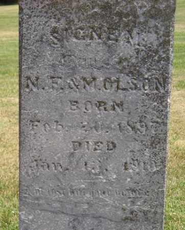 OLSON, SIGNE M. - McCook County, South Dakota | SIGNE M. OLSON - South Dakota Gravestone Photos