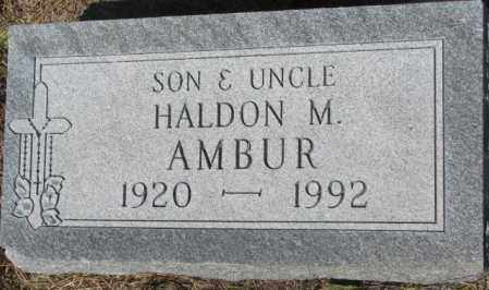AMBUR, HALDON M. - Mellette County, South Dakota | HALDON M. AMBUR - South Dakota Gravestone Photos