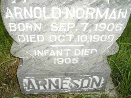 ARNESON, ARNOLD NORMAN - Miner County, South Dakota | ARNOLD NORMAN ARNESON - South Dakota Gravestone Photos