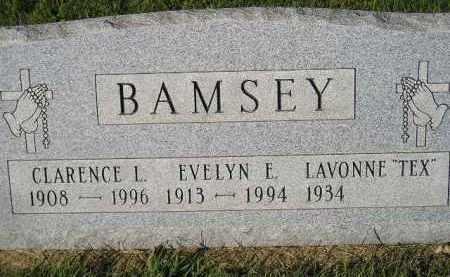 "BAMSEY, LAVONNE ""TEX"" - Miner County, South Dakota | LAVONNE ""TEX"" BAMSEY - South Dakota Gravestone Photos"