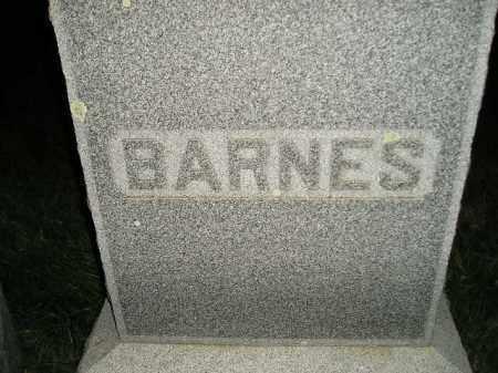 BARNES, FAMILY STONE - Miner County, South Dakota | FAMILY STONE BARNES - South Dakota Gravestone Photos