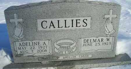 CALLIES, DELMAR WILLIAM - Miner County, South Dakota | DELMAR WILLIAM CALLIES - South Dakota Gravestone Photos