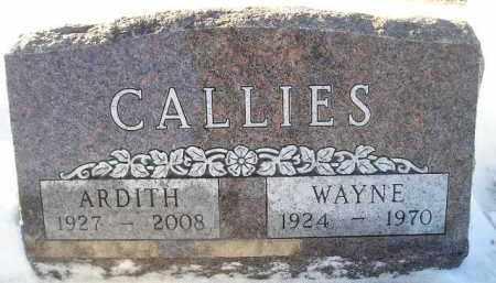 CALLIES, WAYNE - Miner County, South Dakota | WAYNE CALLIES - South Dakota Gravestone Photos