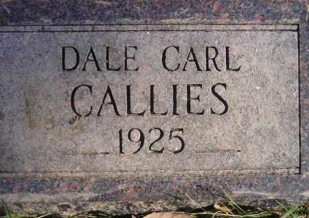 CALLIES, DALE CARL - Miner County, South Dakota | DALE CARL CALLIES - South Dakota Gravestone Photos