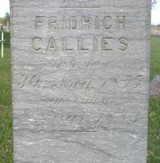 CALLIES, FRIDRICH - Miner County, South Dakota | FRIDRICH CALLIES - South Dakota Gravestone Photos