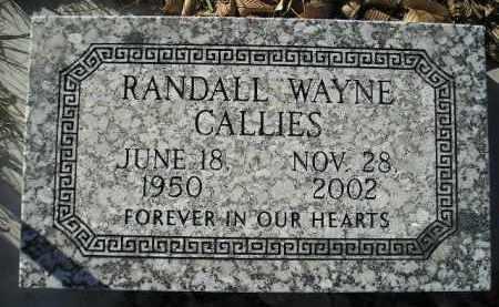 CALLIES, RANDALL WAYNE - Miner County, South Dakota | RANDALL WAYNE CALLIES - South Dakota Gravestone Photos