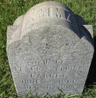 CARNEY, EMMA - Miner County, South Dakota | EMMA CARNEY - South Dakota Gravestone Photos