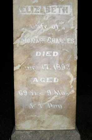 CHARLES, ELIZABETH - Miner County, South Dakota | ELIZABETH CHARLES - South Dakota Gravestone Photos