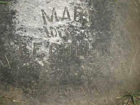COLLINS, MARY - Miner County, South Dakota | MARY COLLINS - South Dakota Gravestone Photos